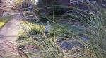 YSDC-garden-buddha-slider-1024
